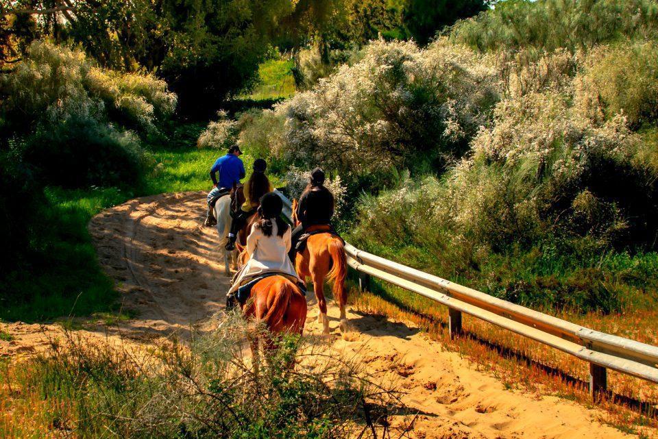 Horseback Riding in Israel - Jerusalem
