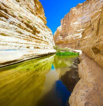 National Parks Negev