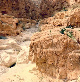 Wadi Darga