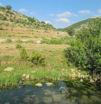 Wadi Qana