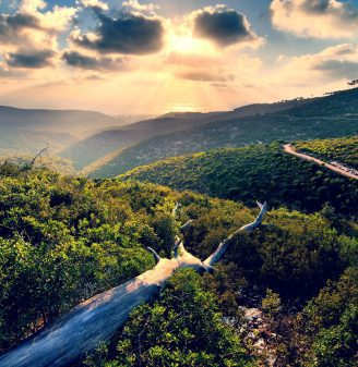 Mount Carmel National Park