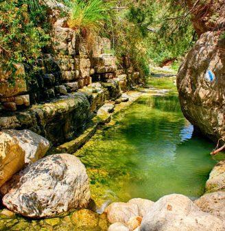 Hiking Arugot Stream