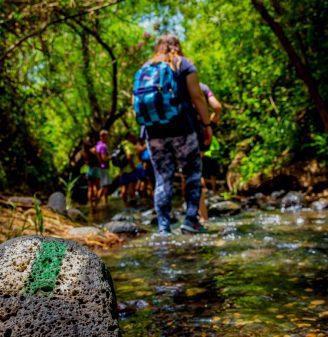 Hiking at Agamon HaHula