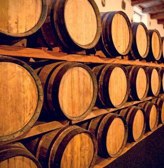 The Best Wine Tour in Judea!