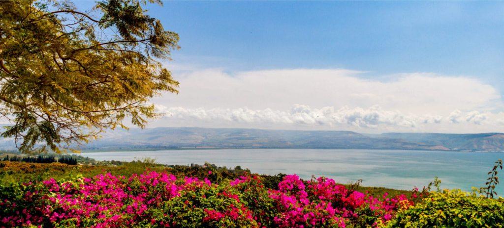 Sea of Galilee Ultimate Guide - Sea of Galilee View
