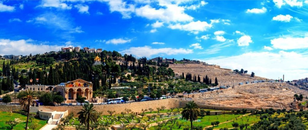 Mount of Olives Ultimate Guide - Mt Olives Panorama