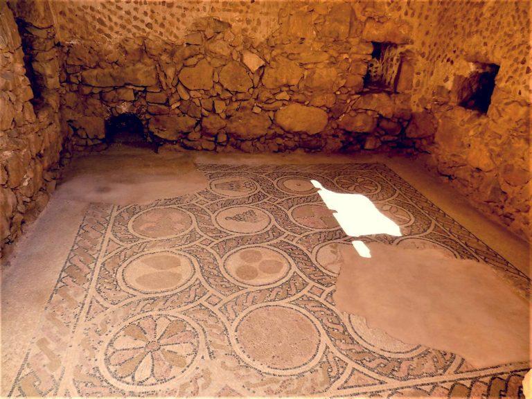 The Promised Land Ten Days Tour - Masada Mosaic Floor