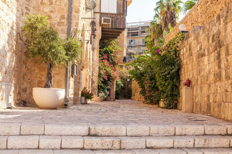 The Promised Land Ten Day Tour Jaffa St