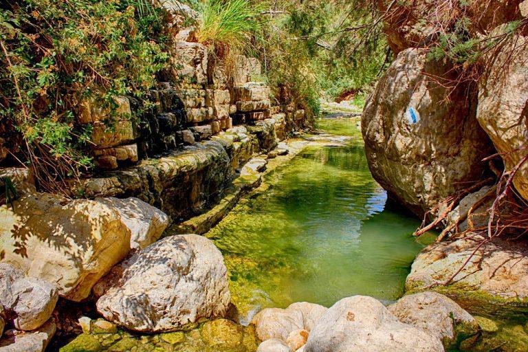 The Dead Sea Masada Tour - Ein Gedi Oasis