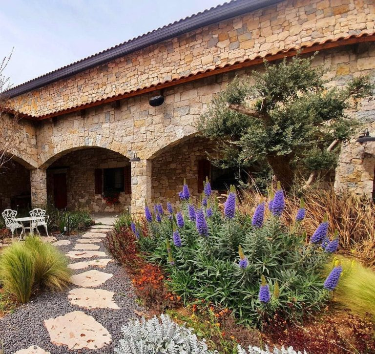 Samaria Day Tour - Psagot Winery Visitor Center