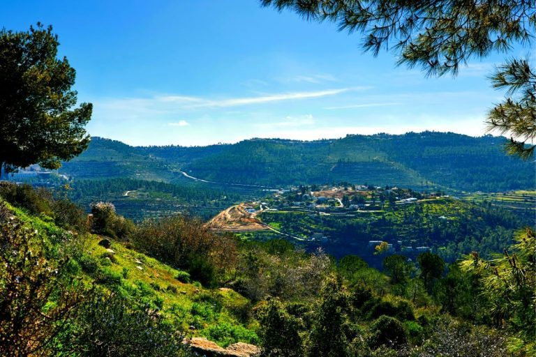 Judaean Hills Ultimate Guide - The View