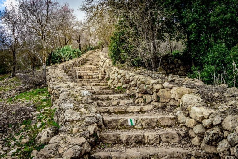 Judaean Hills Ultimate Guide - The Green Trail