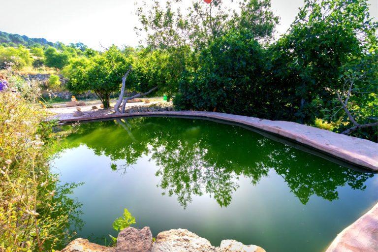 Judaean Hills Ultimate Guide - Ein Sataf