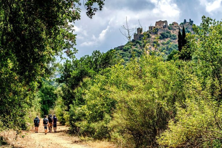 Galilee Day Tour - Monfort Castle Hike
