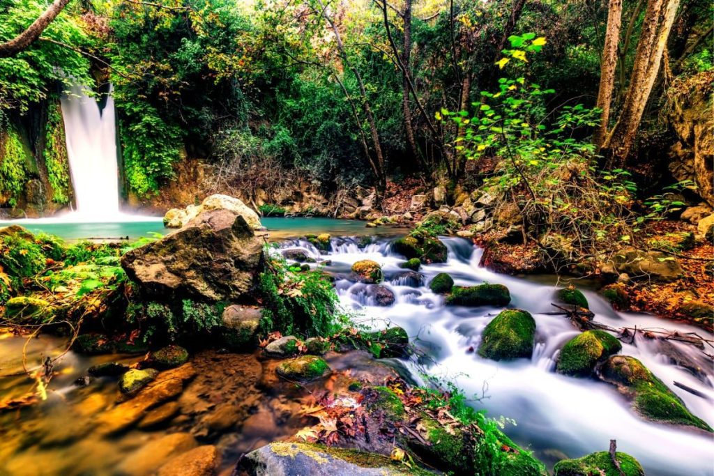 Five Most Beautiful Places in Israel - Hermon Stream