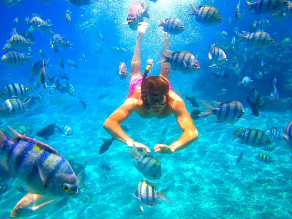 Eilat Coral Beach Nature Reserve Child Snorkeling