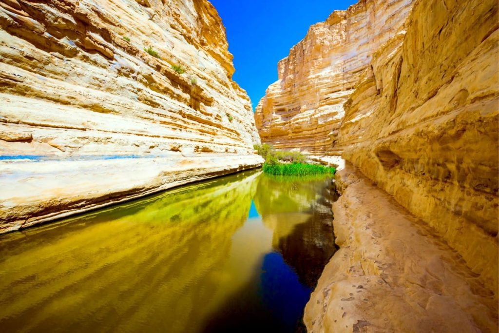 Five Most Beautiful Places in Israel - Ein Avdat