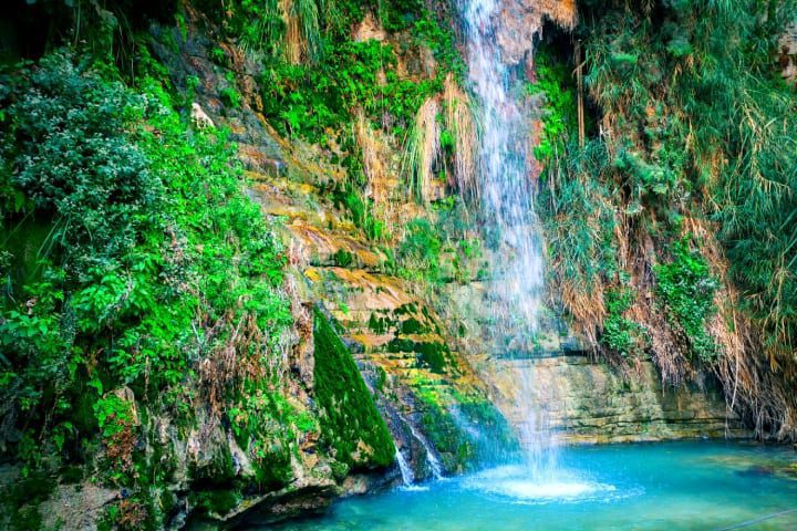 Top Things to See & Do in and Around the Dead Sea - Ein Gedi
