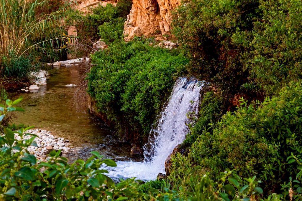 Ein-Prat-Nature-Reserve-Spring Water