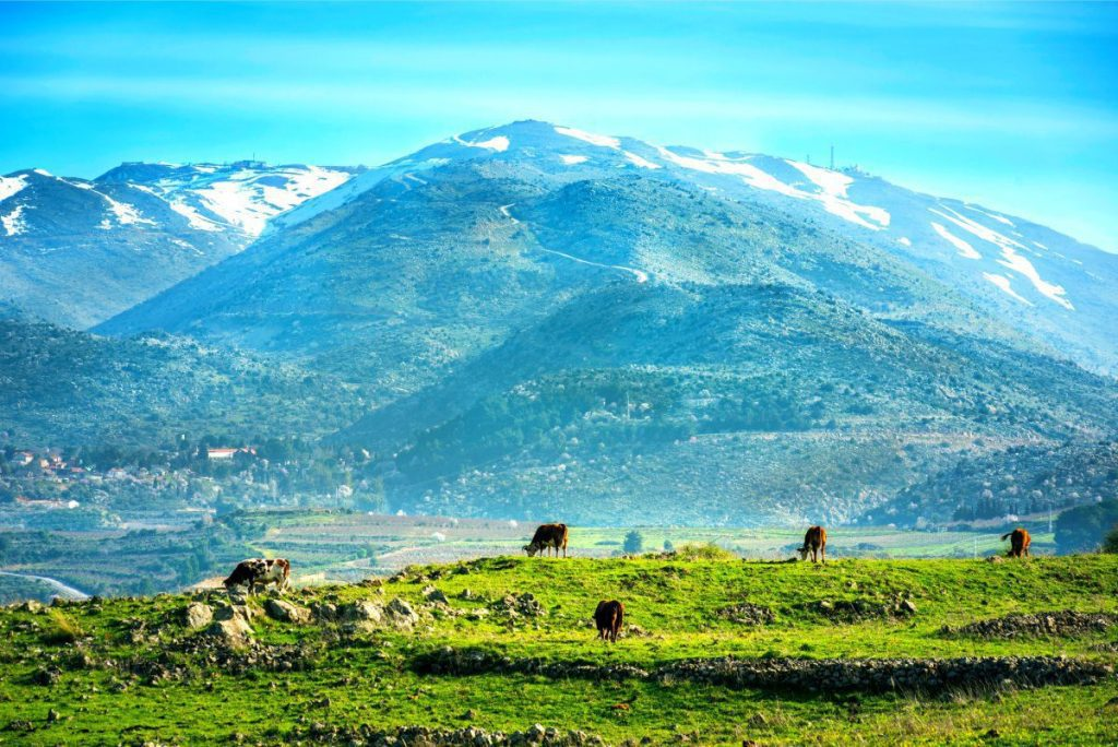 Mount-Hermon-Mount-Hermon-The-Ultimate-Guide-For-Touring-Jerusalem-in-a-DayBest Time to Visit Israel?