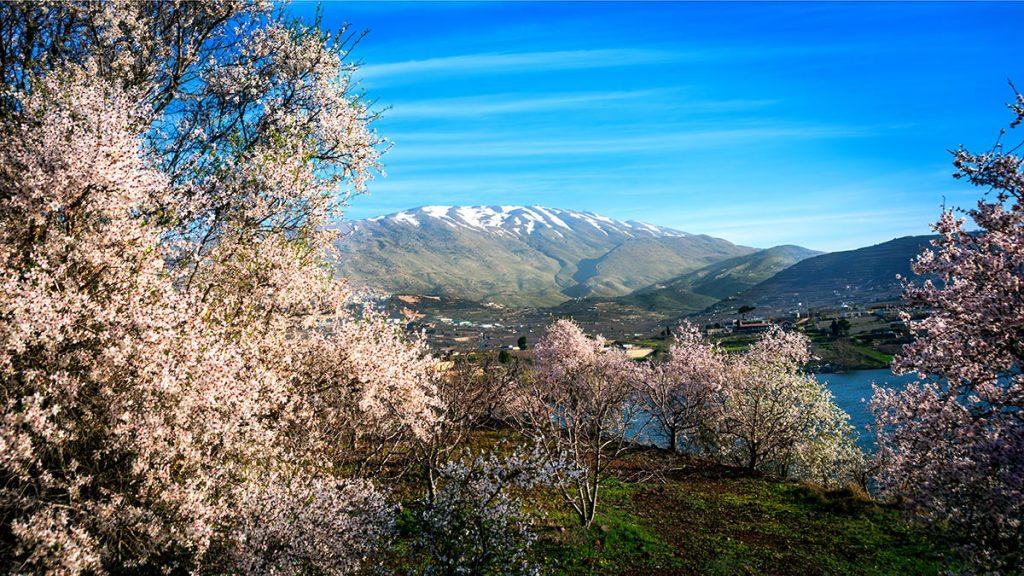Lake-Ram-Mount-Hermon