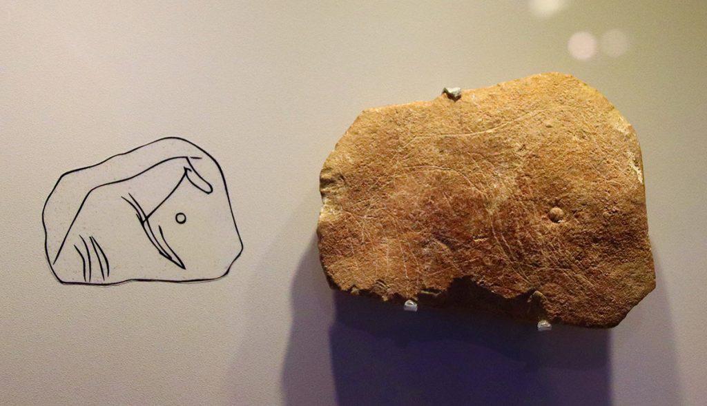 Stone-Age-Animal-Carving-Hayonim-Cave-28000-BP