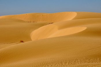 Negev Ultimate Guide - Negev Dunes