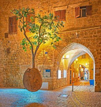 Old Jaffa Ultimate Guide - Floating Orange Tree