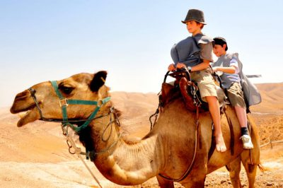 Fun Things to Do in Israel With Kids - Camel Ride