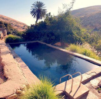 Judaean Desert Ultimate Guide - Ein Prat Tamar Pool
