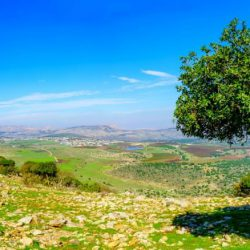 Galilee Day Tour - Galilee View